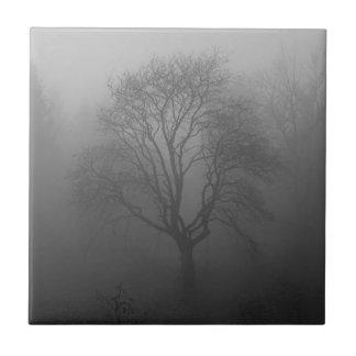 Árbol en la niebla azulejo cuadrado pequeño