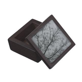 Árbol en la niebla cajas de recuerdo de calidad