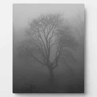 Árbol en la niebla placa de madera