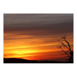 Árbol en la puesta del sol tarjetas de visita grandes
