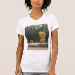 Árbol en las camisetas sin mangas del parque de
