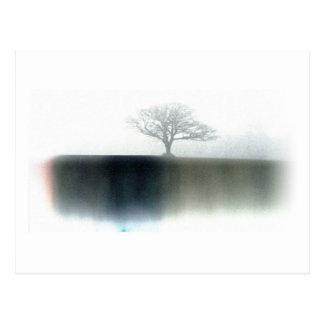 Árbol en nieblas grises postal