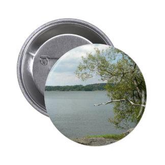 Árbol en orilla de la roca del lago pins