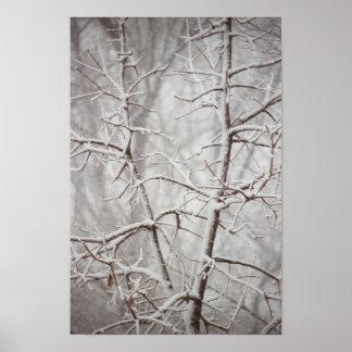 Árbol en un poster de la nevada