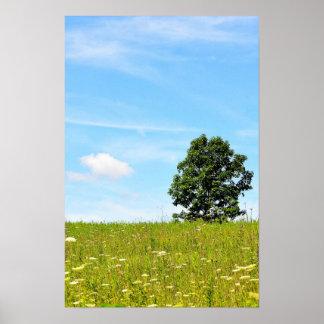 Árbol en un poster del campo