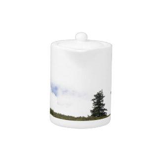 Árbol en una colina