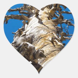 Árbol esquelético con el cielo azul pegatina en forma de corazón
