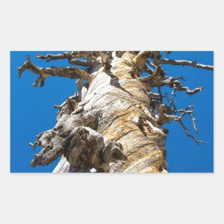 Árbol esquelético con el cielo azul pegatina rectangular