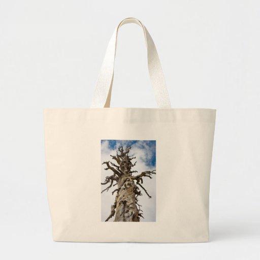 Árbol esquelético con las nubes bolsas