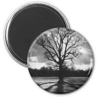 Árbol estéril de las ramas imán redondo 5 cm
