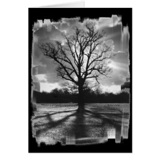 Árbol estéril de las ramas tarjeta de felicitación