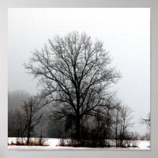 Árbol estéril del invierno impresiones