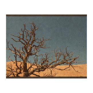 Árbol estéril en desierto papel de corcho para fotos