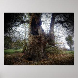 Árbol fantasmagórico póster