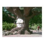 Árbol feliz en las torres de Alton Postales