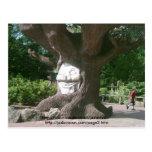 Árbol feliz en las torres de Alton Tarjeta Postal