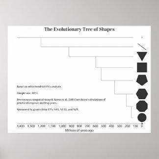 Árbol filogenético posters