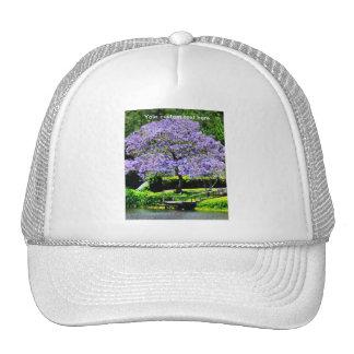 Árbol florecido Jacaranda-Púrpura soñador en el la Gorra