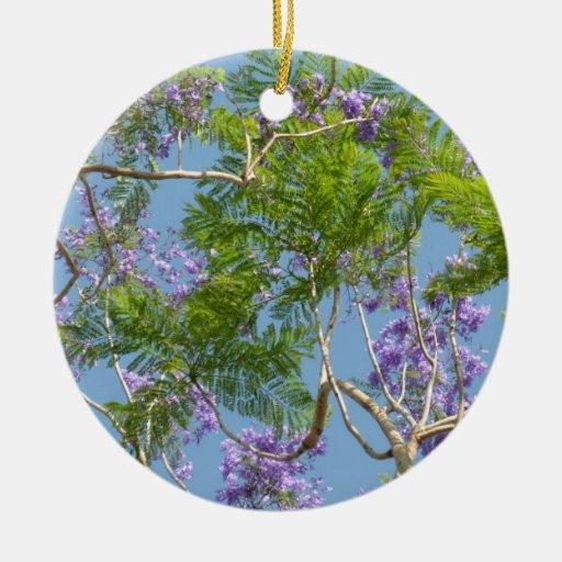 árbol florecido púrpura del jacaranda contra el ci ornamente de reyes