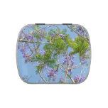 árbol florecido púrpura del jacaranda contra el ci jarrones de dulces