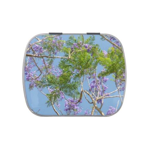 árbol florecido púrpura del jacaranda contra el frascos de dulces