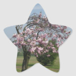 árbol floreciente calcomanía forma de estrella