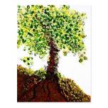 Árbol floreciente postales
