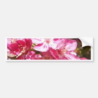 Árbol floreciente precioso etiqueta de parachoque