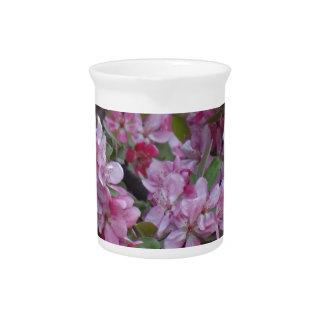 Árbol floreciente rosado de la primavera jarras