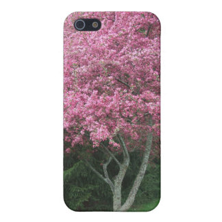 Árbol floreciente rosado de Robinsons Crabapple iPhone 5 Funda