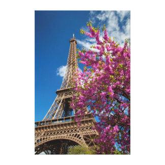 Árbol floreciente rosado debajo de la torre Eiffel Impresiones En Lona Estiradas