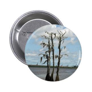 Árbol frecuentado del pantano pin