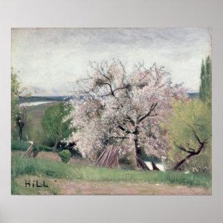 Árbol frutal en el flor, Bois-le-ROI Póster
