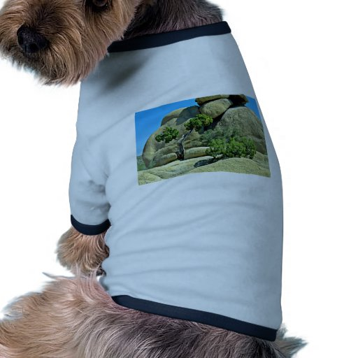 Árbol Gnarled, arbustos entre los cantos rodados Camiseta Con Mangas Para Perro
