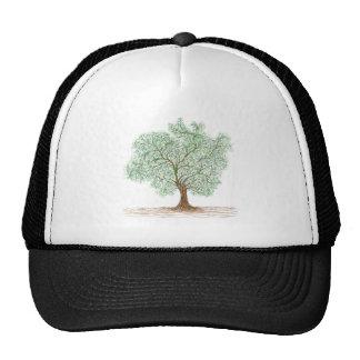 árbol gorras