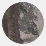 Árbol grabado en relieve etiquetas redondas