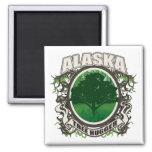 Árbol Hugger Alaska Iman