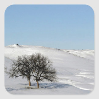 Árbol Icey Snowscape Pegatinas Cuadradas Personalizadas