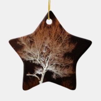 Árbol iluminado adorno navideño de cerámica en forma de estrella