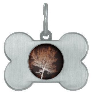 Árbol iluminado placa mascota
