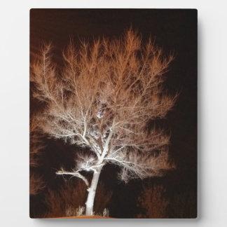 Árbol iluminado placas de madera