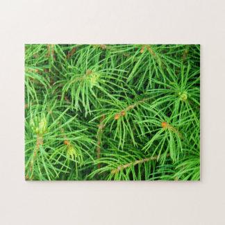 Árbol imperecedero puzzle con fotos