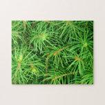 Árbol imperecedero puzzles con fotos