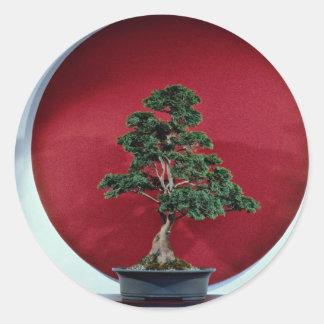 Árbol inspirador de los bonsais pegatina redonda