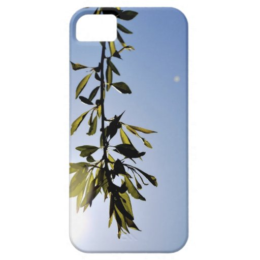 Árbol iPhone 5 Case-Mate Protectores
