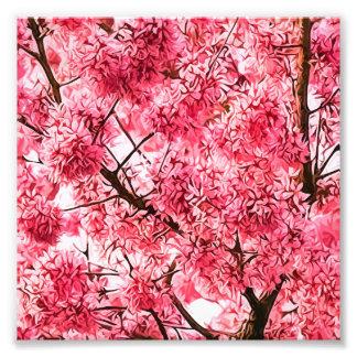 Árbol japonés de la flor de cerezo (2013) fotografías