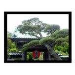árbol japonés postal