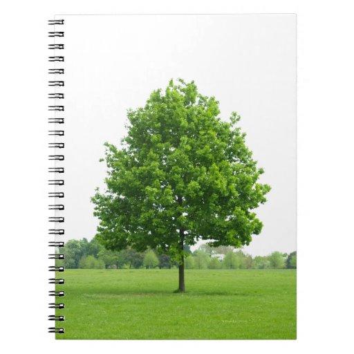 Árbol Libros De Apuntes