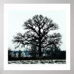 Árbol majestuoso en la nieve impresiones