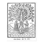 Árbol medieval de ciencias tarjeta postal